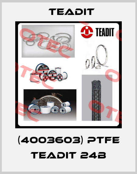 Teadit-0000004160 / PTFE 24 B  price