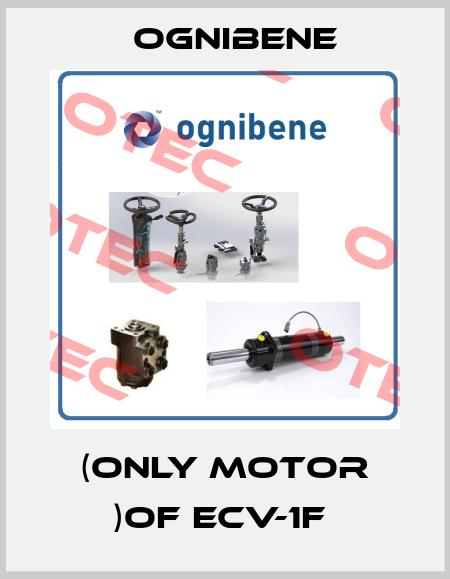 Ognibene-(ONLY MOTOR )OF ECV-1F  price