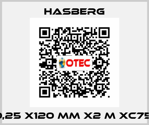 Hasberg-0,25 X120 MM X2 M XC75  price