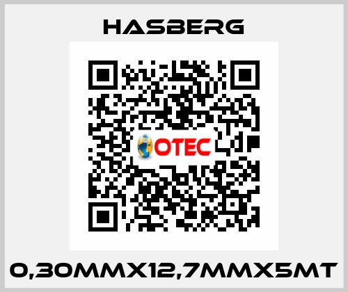 Hasberg-0,30MMX12,7MMX5MT  price